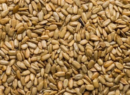 Image de la catégorie Graines de tournesol