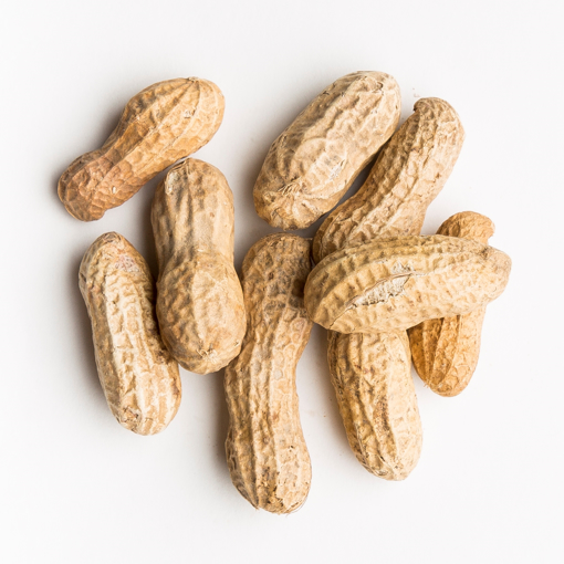 Picture of NON SALTED PEANUT IN SHELL