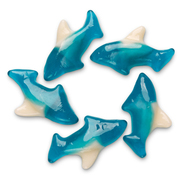 Picture of BLUE GUMMI SHARK