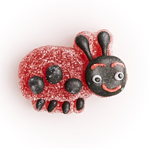 Picture of jelly ladybug